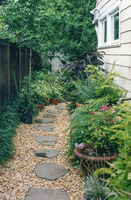 Narrow side gardens needn't be boring!