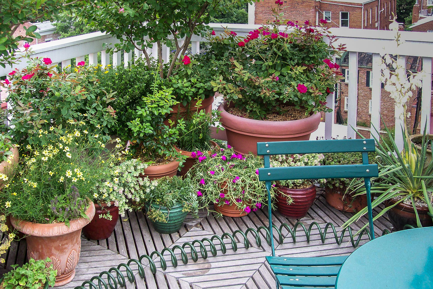 This 'garden' is all about containers! : Rooftop and Balcony Gardens : CITYSCAPES® Landscaping Inc.