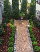 Simple planting of Arborvitae, boxwood and Knock Out Roses for this narrow front garden.