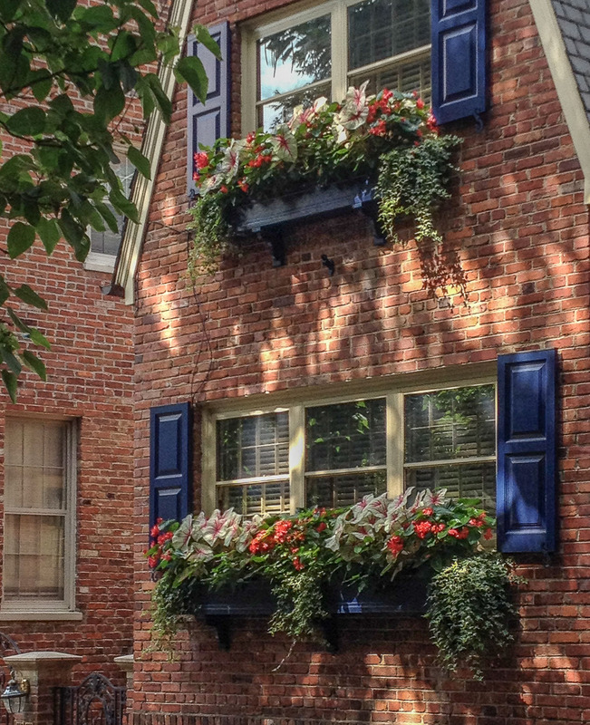 Window boxes with annuals create color where there is no front yard. : Annuals : CITYSCAPES® Landscaping Inc.