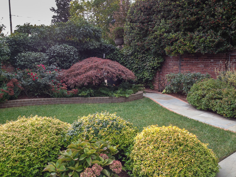 Pruning is one of our specialties. : Maintenance : CITYSCAPES® Landscaping Inc.
