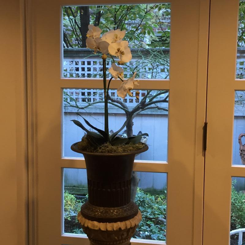 Faux orchid in an antique iron urn