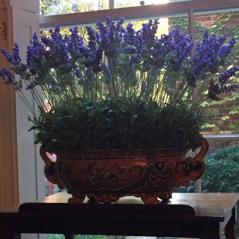 Faux lavender in an antique Italian vessel