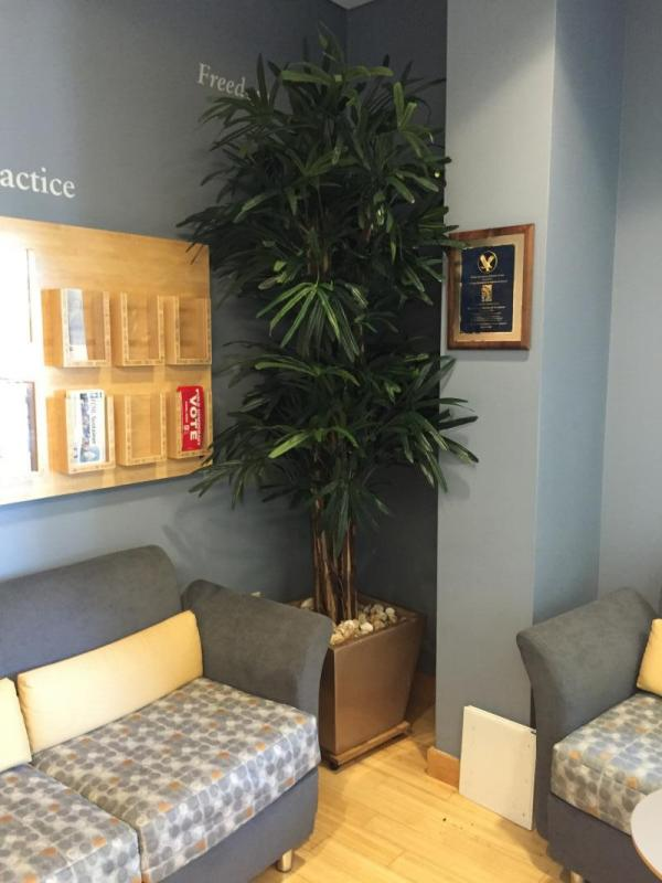 Faux palm in an office waiting room