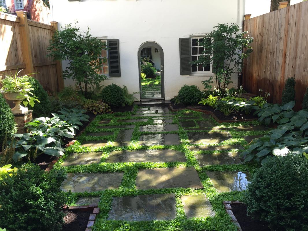 A shady oasis in a backyard of a Georgetown townhouse. : Georgetown and Capitol Hill Gardens : CITYSCAPES® Landscaping Inc.